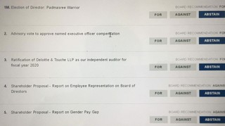 Have you as a MSFT shareholder voted for the following?