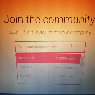 Blind users by company